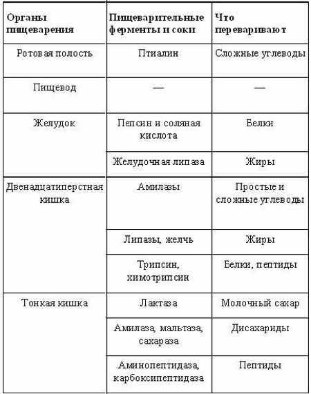 Юлия савичева похудела на